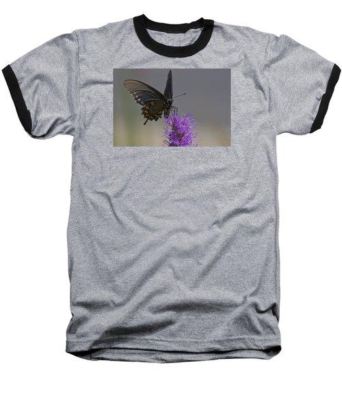 Pipevine Alights Baseball T-Shirt