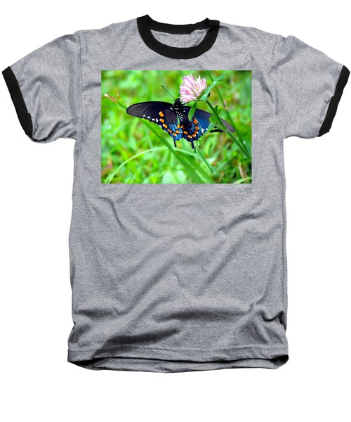 Pipevine Swallowtail Hanging On Baseball T-Shirt