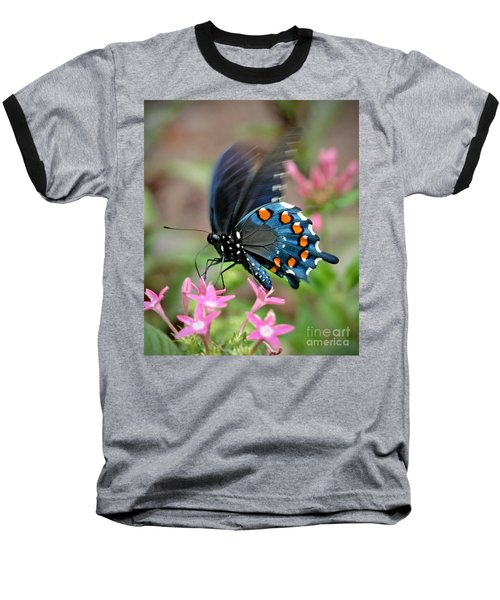 Pipevine Swallowtail Baseball T-Shirt by Liz Masoner