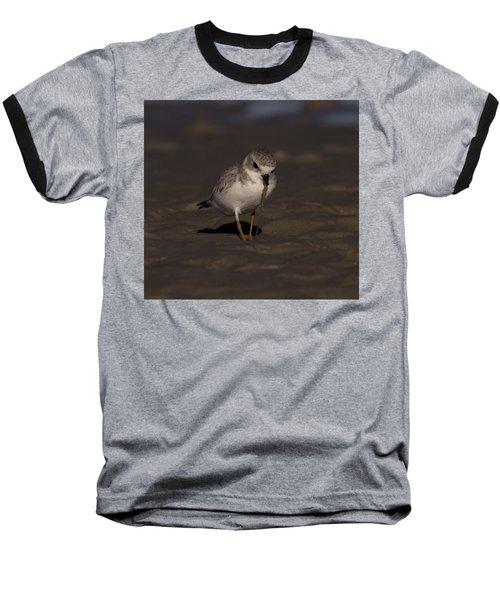 Piping Plover Photo Baseball T-Shirt by Meg Rousher