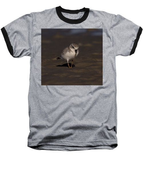 Piping Plover Photo Baseball T-Shirt