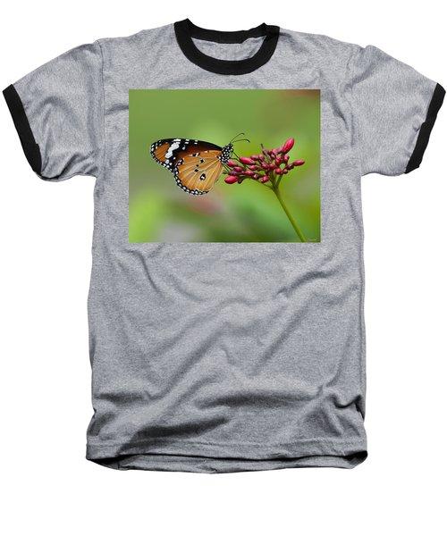 Plain Tiger Or African Monarch Butterfly Dthn0008 Baseball T-Shirt