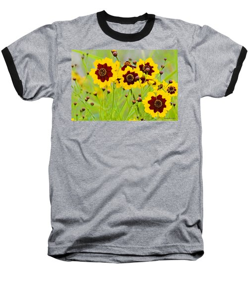 Plains Coreopsis Baseball T-Shirt