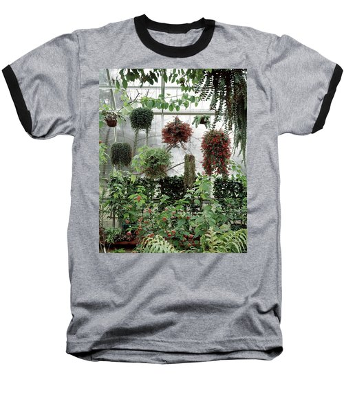 Plants Hanging In A Greenhouse Baseball T-Shirt