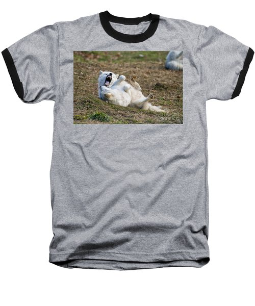 Baseball T-Shirt featuring the photograph Playful Arctic Wolves by Wolves Only