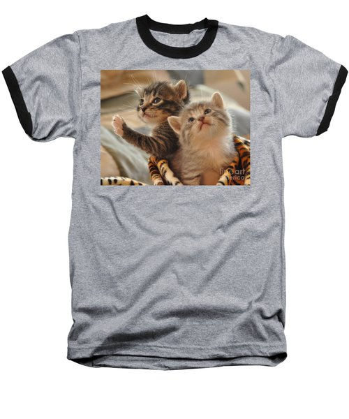 Playful Kittens Baseball T-Shirt