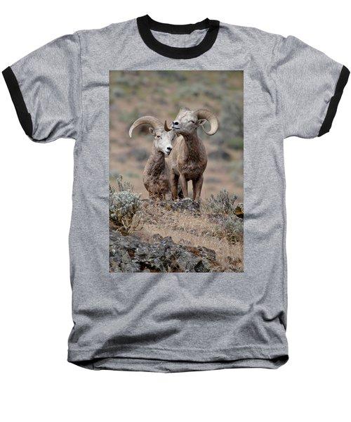 Baseball T-Shirt featuring the photograph Playfull Rams by Athena Mckinzie
