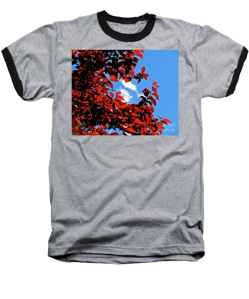 Plum Tree Cloudy Blue Sky 1 Baseball T-Shirt by CML Brown
