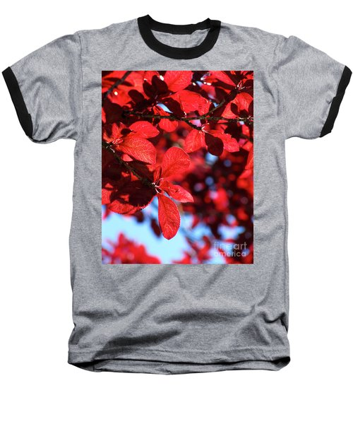 Baseball T-Shirt featuring the photograph Plum Tree Cloudy Blue Sky 2 by CML Brown