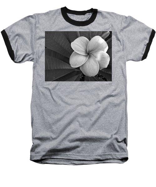Plumeria With Raindrops Baseball T-Shirt