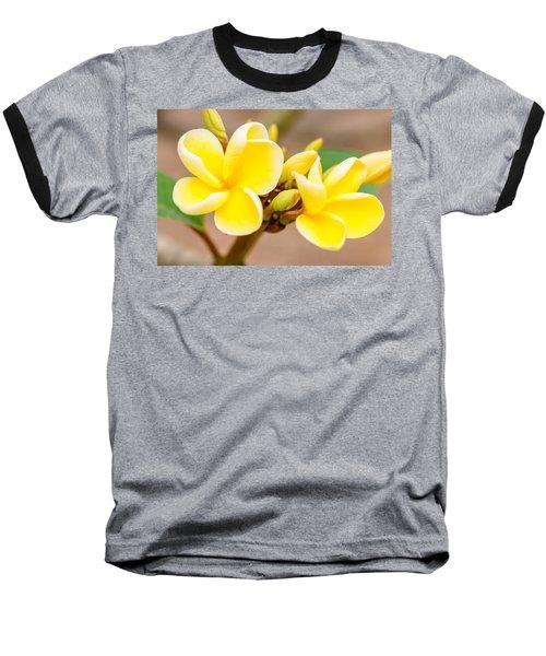Plumerias Of Paradise 14 Baseball T-Shirt