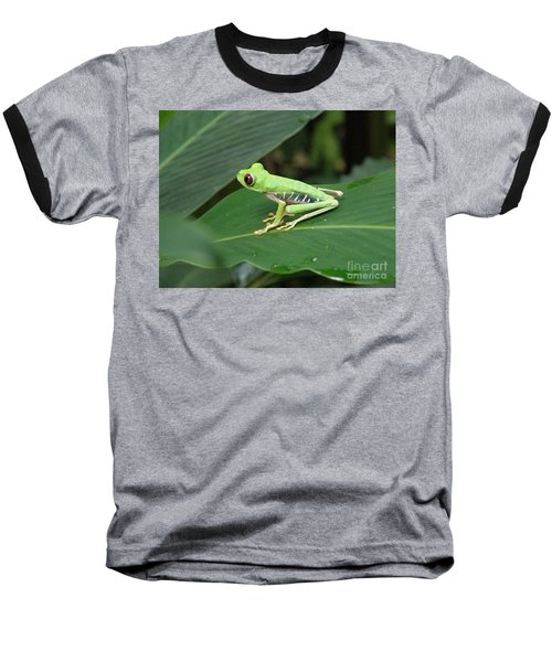 Poison Dart Frog Baseball T-Shirt by DejaVu Designs