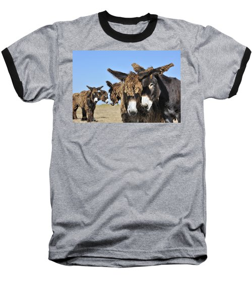 Baseball T-Shirt featuring the photograph Poitou Donkey 3 by Arterra Picture Library