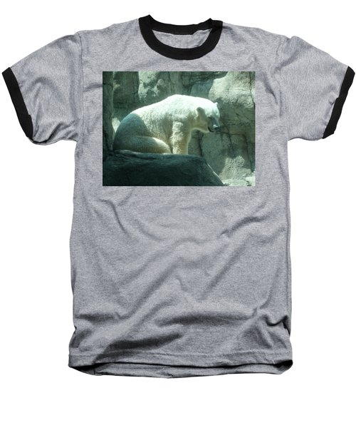Polar Bear Baseball T-Shirt by Fortunate Findings Shirley Dickerson