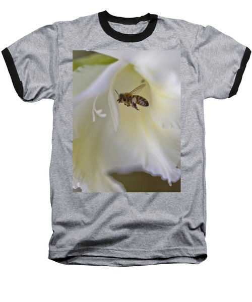 Pollen Carrier Bee Baseball T-Shirt by Maj Seda