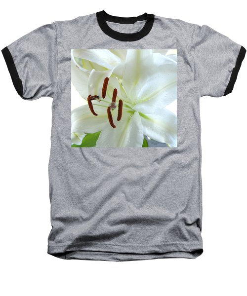 Pollinated White Tiger Lily Baseball T-Shirt