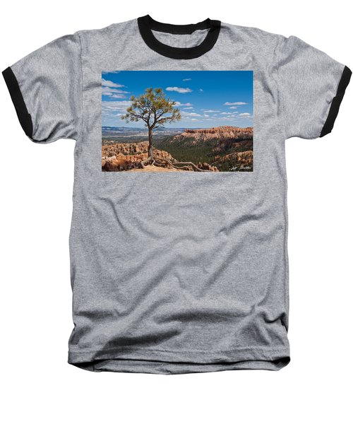 Baseball T-Shirt featuring the photograph Ponderosa Pine Tree Clinging To Life On Canyon Rim by Jeff Goulden