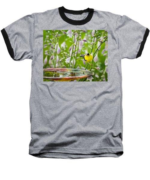 Poolside Perch Baseball T-Shirt