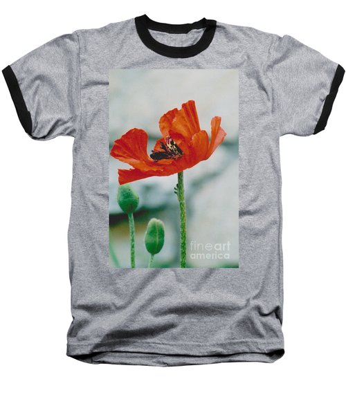 Poppy - 1 Baseball T-Shirt by Jackie Mueller-Jones