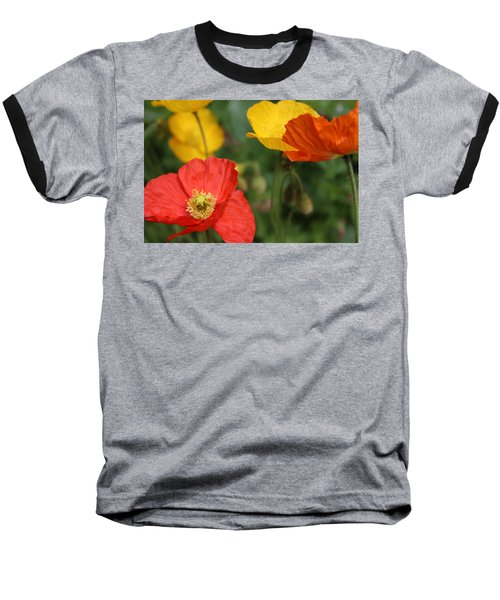Poppy Iv Baseball T-Shirt