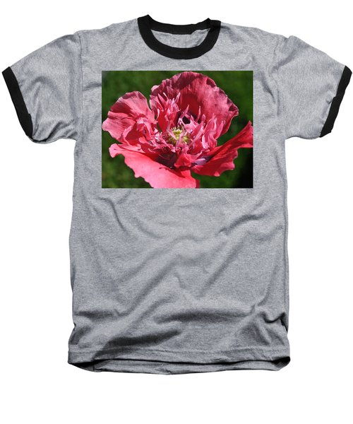 Poppy Pink Baseball T-Shirt