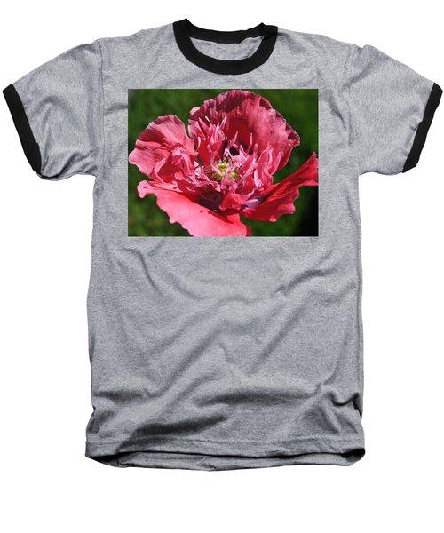 Poppy Pink Baseball T-Shirt by Jim Hogg