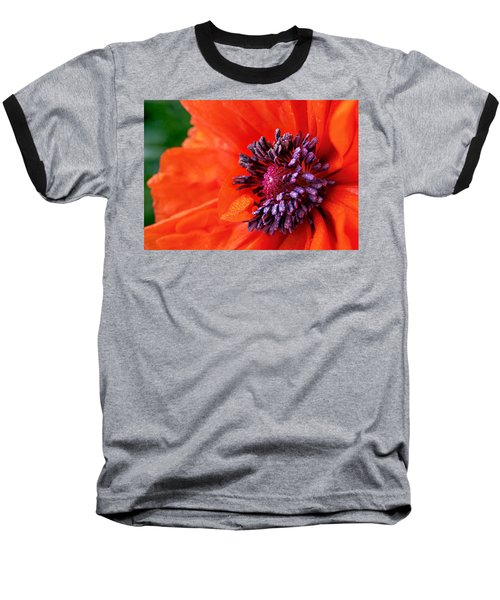 Poppy's Purple Passion Baseball T-Shirt