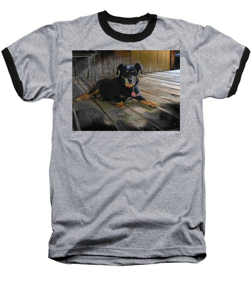 Porch Patrol Baseball T-Shirt