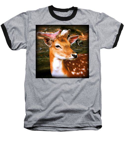 Portrait Male Fallow Deer Baseball T-Shirt