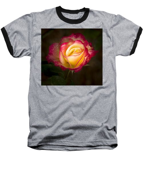Portrait Of A Double Delight Rose Baseball T-Shirt