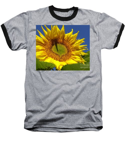Baseball T-Shirt featuring the photograph Portrait Of A Sunflower by Diane Miller
