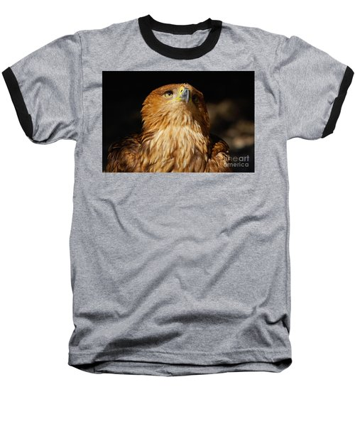 Portrait Of An Eastern Imperial Eagle Baseball T-Shirt