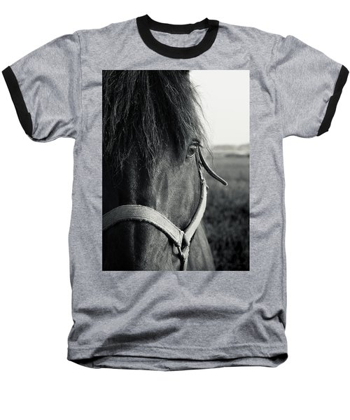 Portrait Of Horse In Black And White Baseball T-Shirt