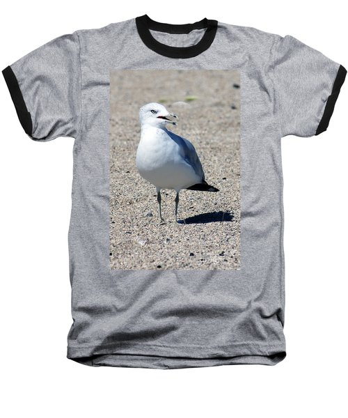 Baseball T-Shirt featuring the photograph Posing Gull by Debbie Hart