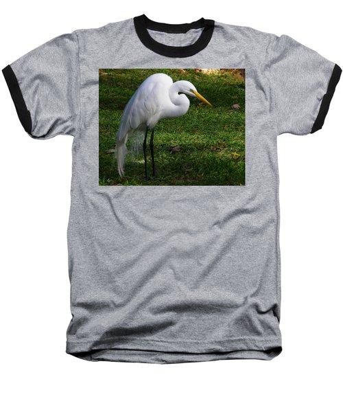 Posing Prettily Baseball T-Shirt