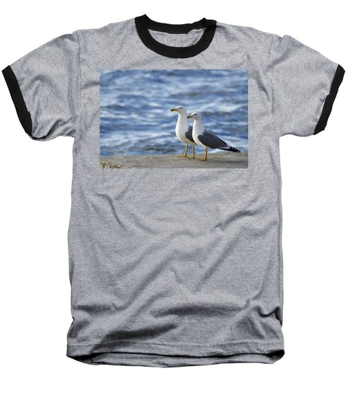 Posing Seagulls Baseball T-Shirt