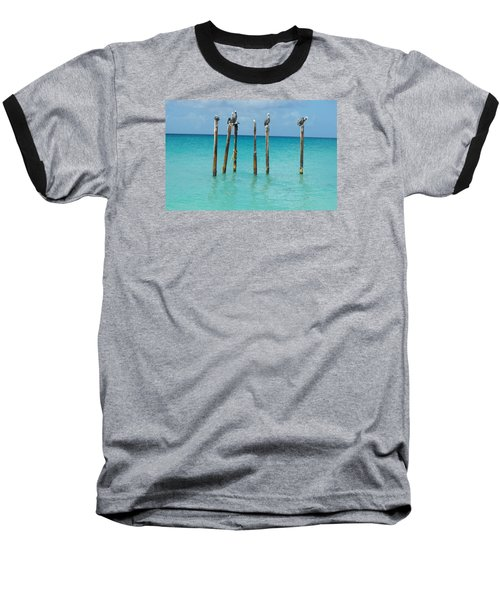 Posted Seagull Baseball T-Shirt by David and Lynn Keller