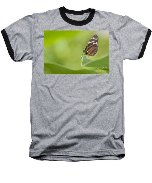 Baseball T-Shirt featuring the photograph Postman On A Leaf by Bryan Keil