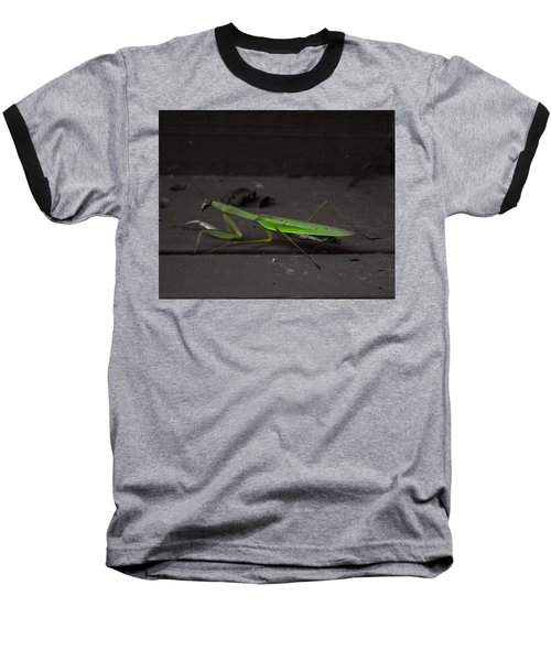 Praying Mantis 2 Baseball T-Shirt