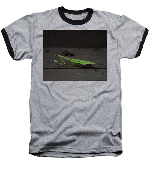 Praying Mantis 2 Baseball T-Shirt