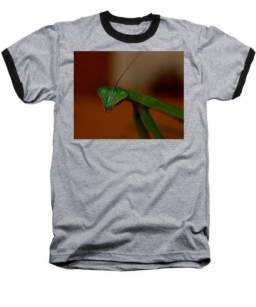 Praying Mantis Closeup Baseball T-Shirt