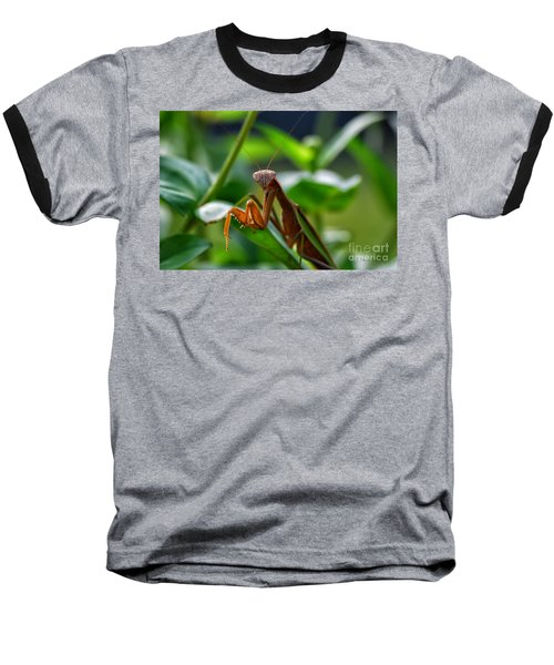 Baseball T-Shirt featuring the photograph Praying Mantis by Thomas Woolworth