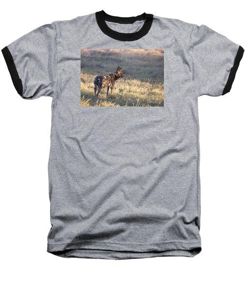 Pregnant African Wild Dog Baseball T-Shirt