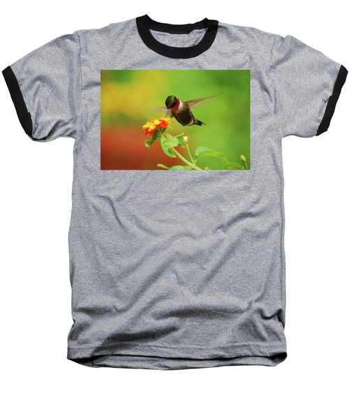 Pretty As A Picture Baseball T-Shirt by Lori Tambakis