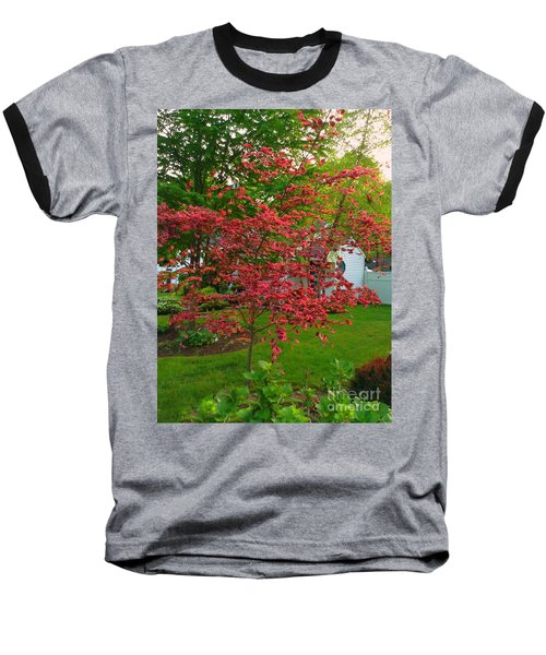 Baseball T-Shirt featuring the photograph Pretty Pink Beech Tree by Becky Lupe