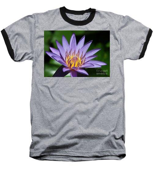 Pretty Purple Petals Baseball T-Shirt