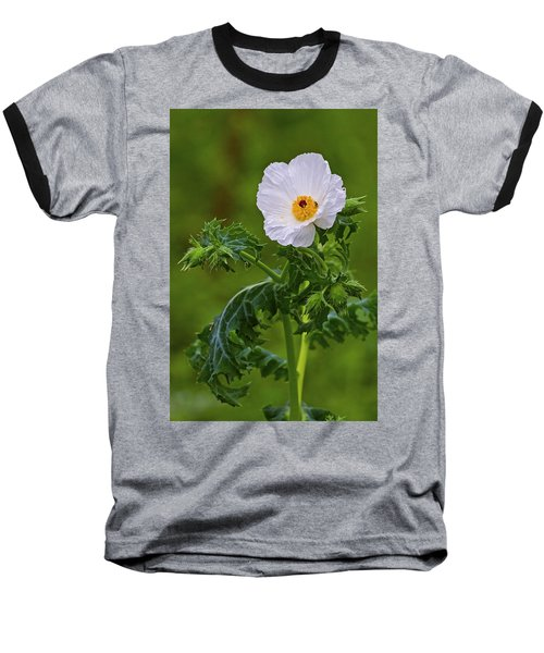 Prickly Poppy Baseball T-Shirt by Gary Holmes