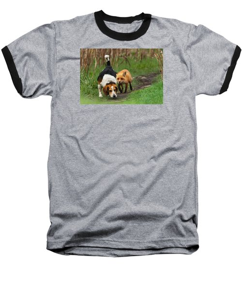 Probably The World's Worst Hunting Dog Baseball T-Shirt by Mircea Costina Photography
