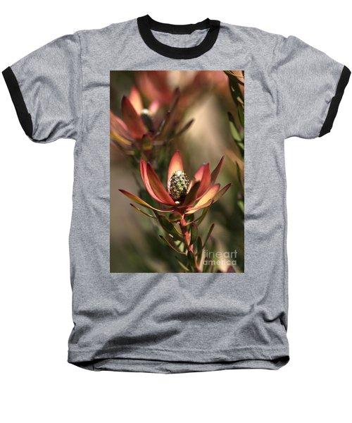 Protea  Baseball T-Shirt