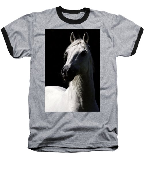 Proud Stallion Baseball T-Shirt by Wes and Dotty Weber